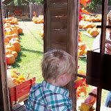 Pumpkin Patch 2015 - 100_0440.JPG