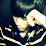 Chalothorn Kosakul's profile photo