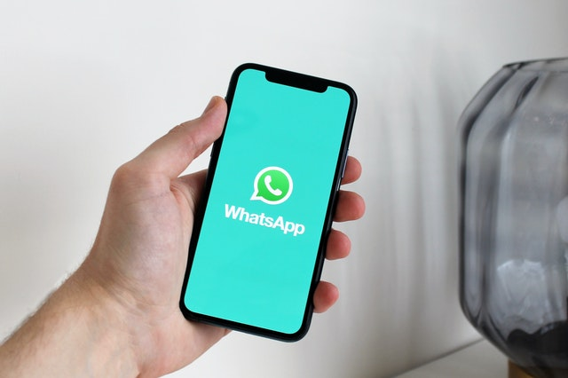 How to read deleted message on whatsapp   chat bin - apk
