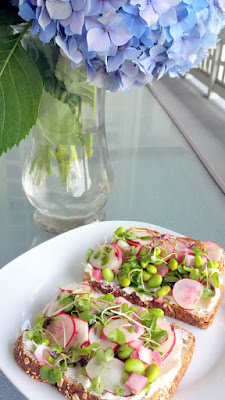 My recipe for a summer sandwich of fun textures, a Radish, Edamame, Ricotta and Greens Sandwich