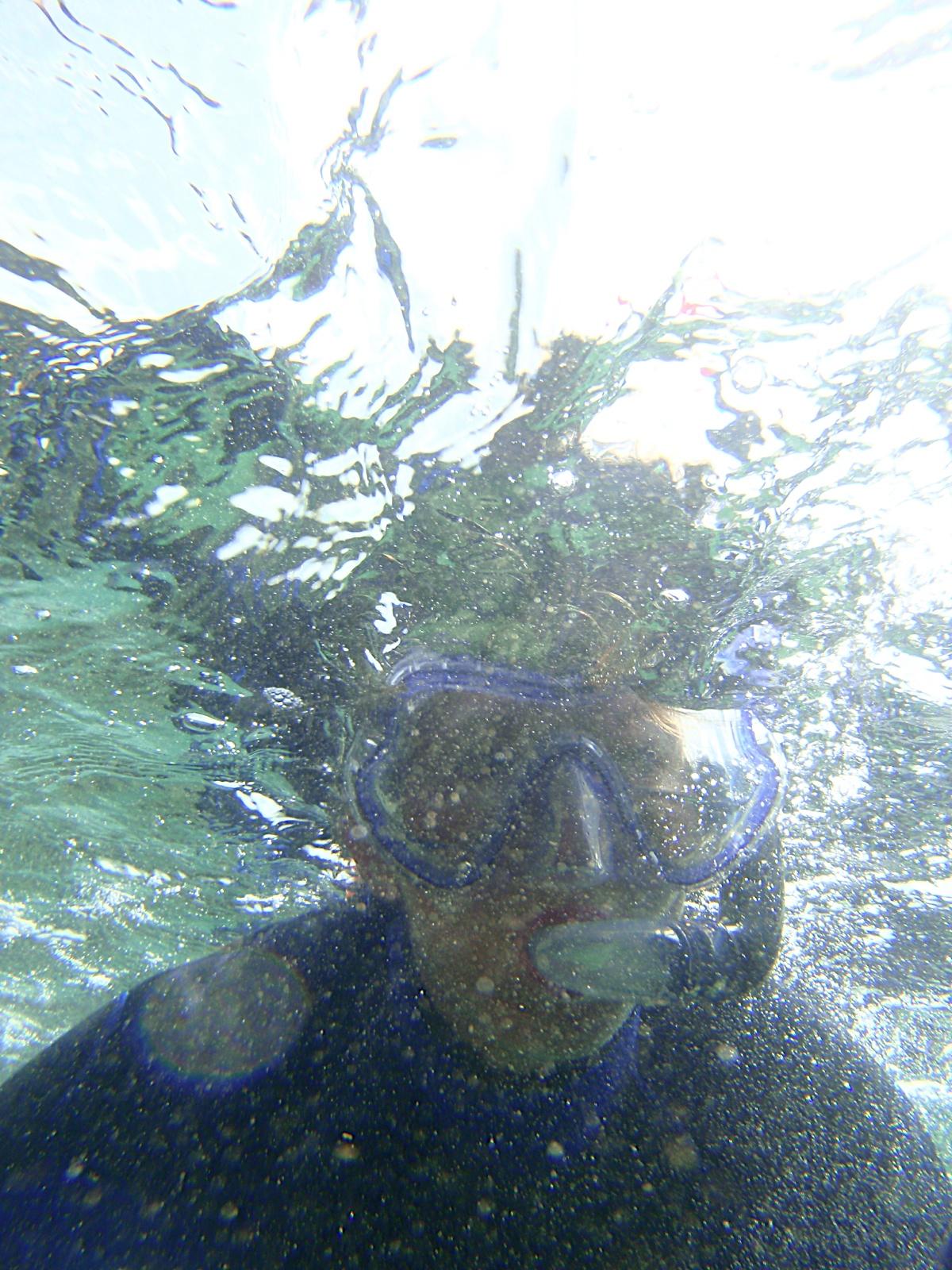 Monogràfic Marí 2010 - P5300352.JPG
