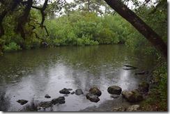 Rainy River-1