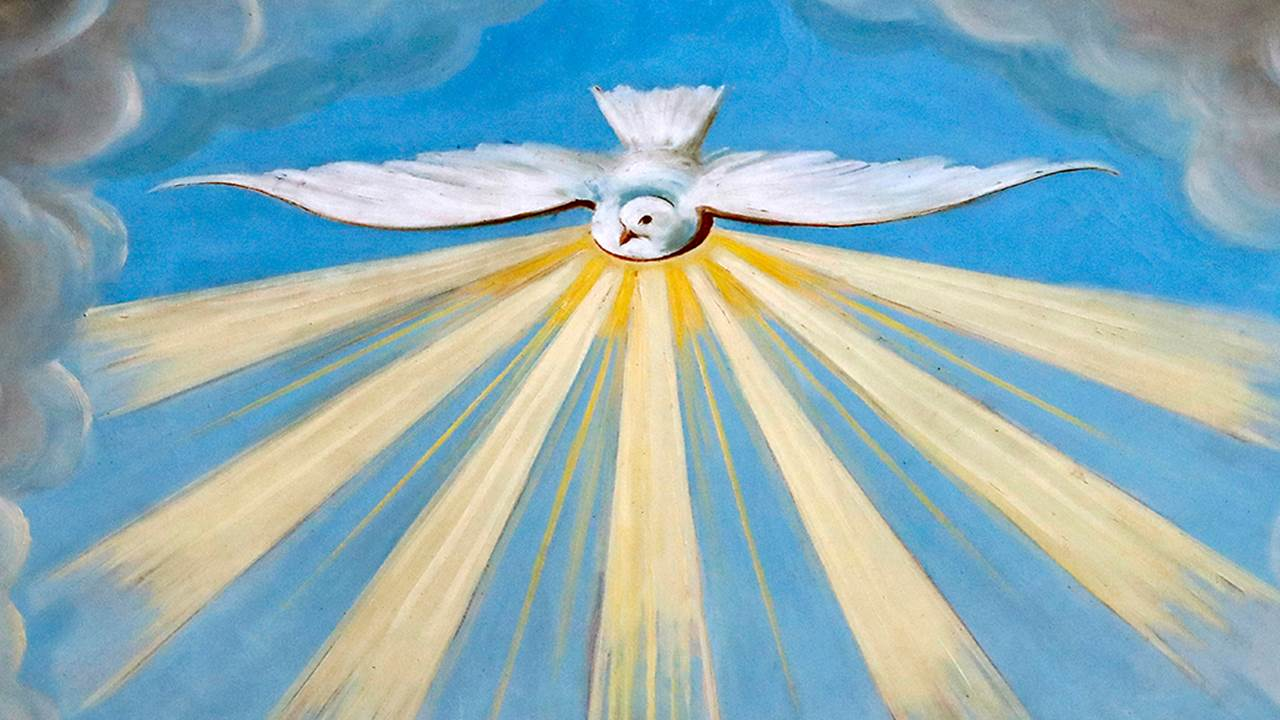 Làm sao để biết Chúa Thánh Thần đang hướng dẫn ta