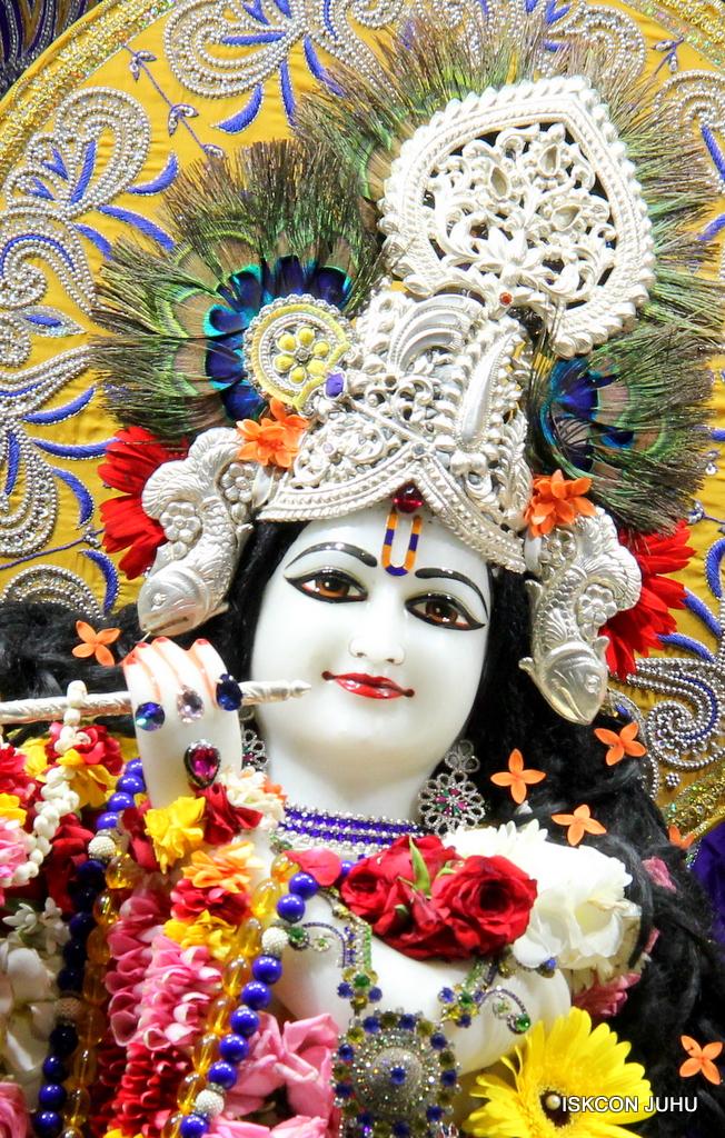 ISKCON Juhu Sringar Deity Darshan on 7th Sep 2016 (63)