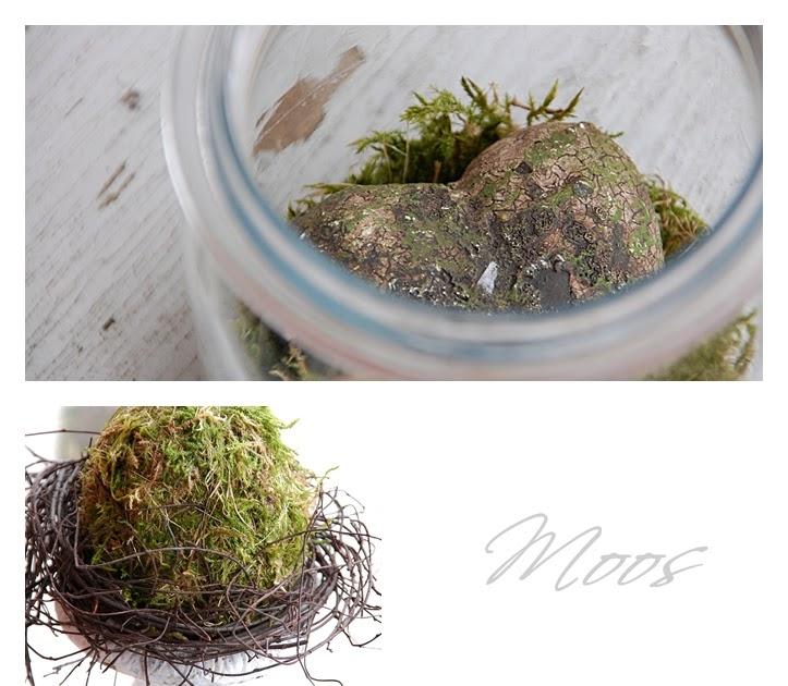 house no 43 moos deko moss decoration. Black Bedroom Furniture Sets. Home Design Ideas