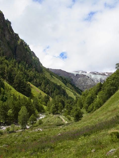 Pentes de l'Elbruz à 2250 m, Terskol (Kabardino-Balkarie), 12 août 2014. Photo : J. Michel