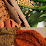 Dianat Food Corporation's profile photo