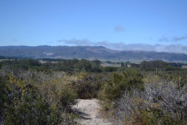 farms and mountains
