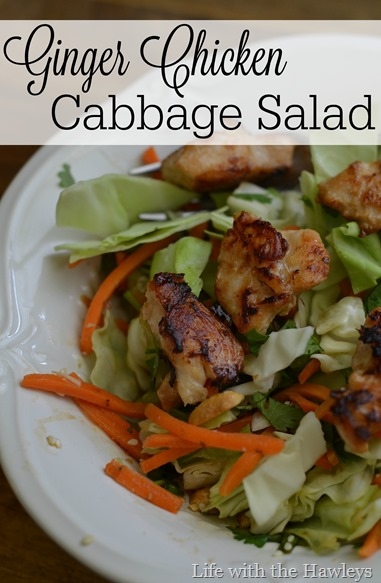 Ginger Chicken Cabbage Salad