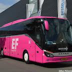 Pink Setra Besseling (14).jpg