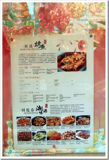 160410_Victoria_Chinatown_0022