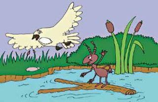 La paloma y la hormiga fabula infantil para niños