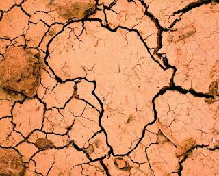 Changement climatique : 7 pays africains bénéficient de fonds.