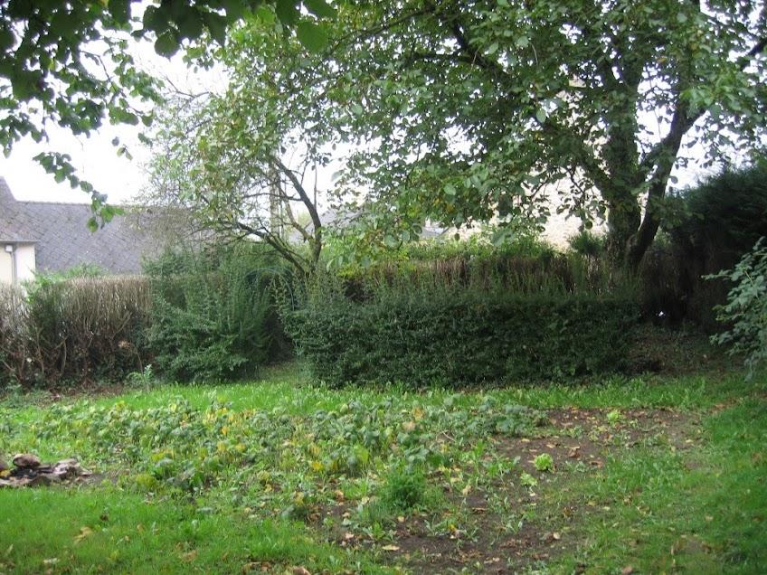 Besoin aide pour creer mon jardin au jardin forum de for Creer mon jardin