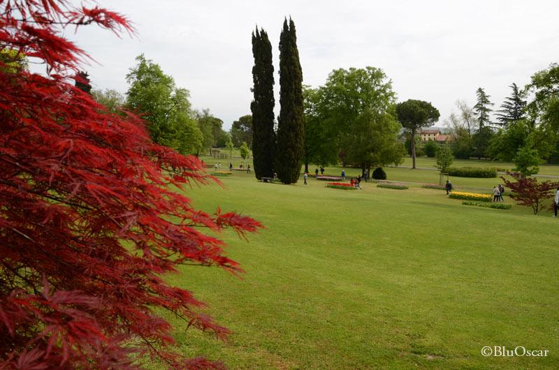 Parco Giardino Sigurtà 8