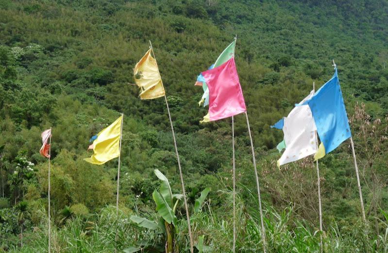 TAIWAN . Hualien et au Sud de Hualien,presque jusqu à Taitung - P1160815.JPG