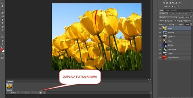 duplicare-fotogrammi
