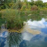 Keffer Marsh - это искусственное болото на одном из притоков небольшой речушки Don. Посередине - островок где весной можно видеть пару гусей на гнезде с яйцами. А летом - черепахи загорают :)