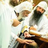 Fr. Luke's Ordination
