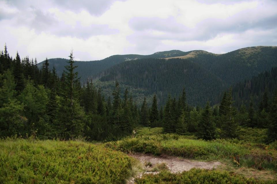 Zadnia Dolina Łatana