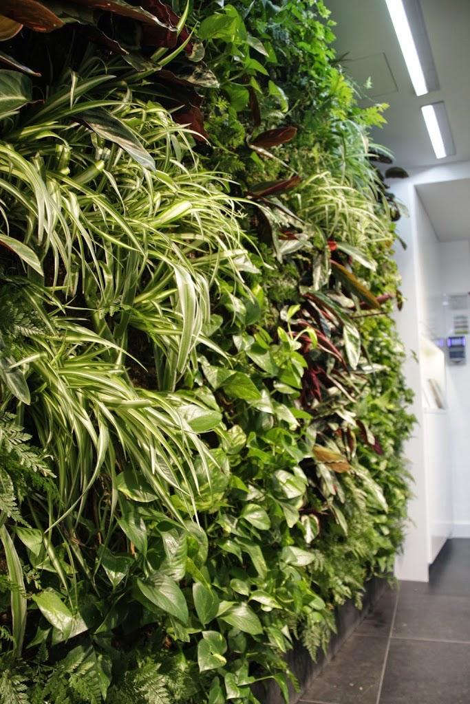 Jardines verticales y paisajismo en madrid for Jardin vertical madrid