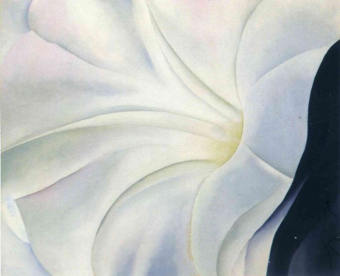 Georgia O'Keeffe - Black Petunia And White Morning Glory 3 1926