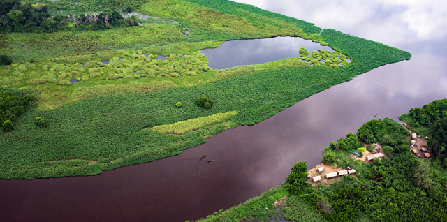 Aerial view of peatlands in the Cuvette Centrale region of DRC. The newly discovered area of peatlands is thought to be roughly the same size as England. Photo: Daniel Beltrá / Greenpeace