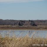 01-19-13 Hagerman Wildlife Preserve and Denison Dam - IMGP4071.JPG