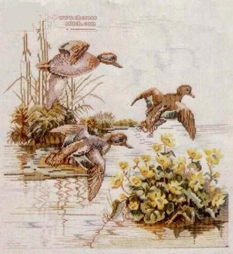 Wild birdcross stitch pattern