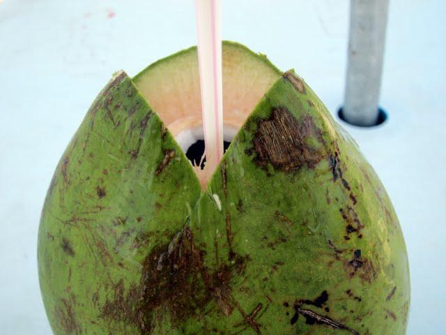 Coconut on Copacabana Beach in Rio de Janeiro Brazil