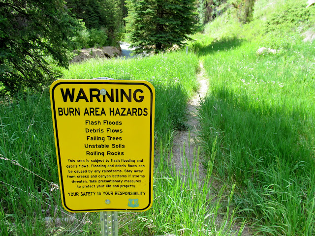 Burn area hazards