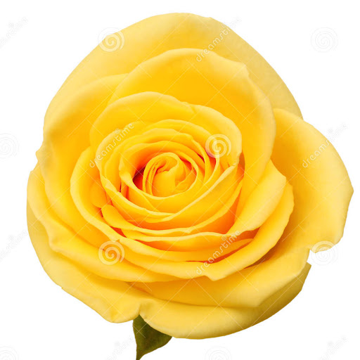 port allen single christian girls Ni-vanuatu celebrate the christian calendar,  allen, michael, ed vanuatu:  any women coming to vanuatu with a single status is free to leave the country.