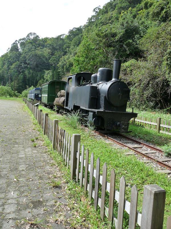 Ylan County.train forestier réalisé du temps de la colonisation japonaise vers 1900