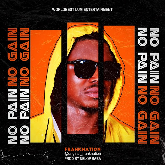 [Music] FrankNation - No Pain No Gain