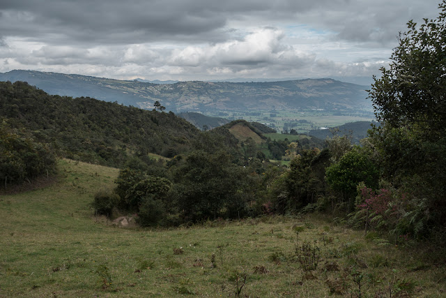 Finca Passiflora, La Trinidad, 2980 m (Guasca, Cundinamarca, Colombie), 27 novembre 2015. Photo : C. Basset