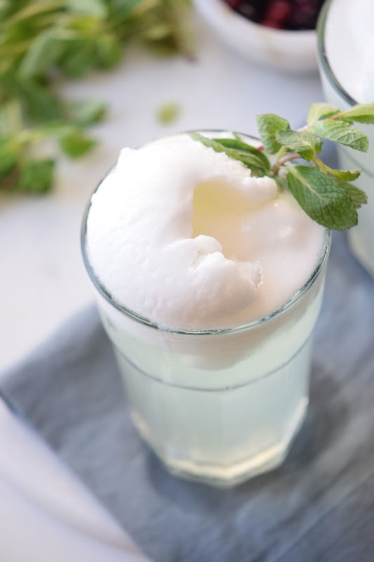 Mint-Float-Recipe-5