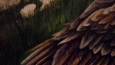 Work in Progress, Colour level 2. Source shows close up of Resting white-tailed eagle wing.