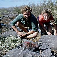86_Galapagos iganua Jack Jas.jpg
