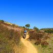 laguna_coast_wilderness_IMG_2226.jpg