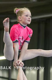 Han Balk Fantastic Gymnastics 2015-8407.jpg