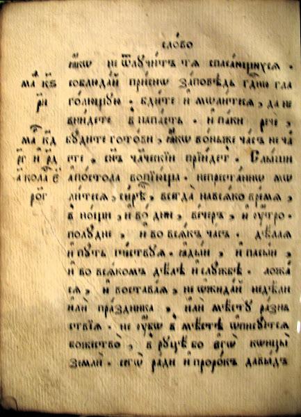 xxx imagen 64