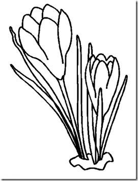 22 - flores y primaveras (20)