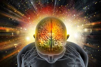 Brain ! दिमाग से जुड़े रोचक तथ्य व् पूरी जानकारी