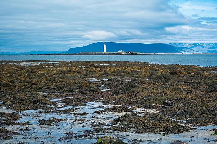 Reykjavík28.jpg