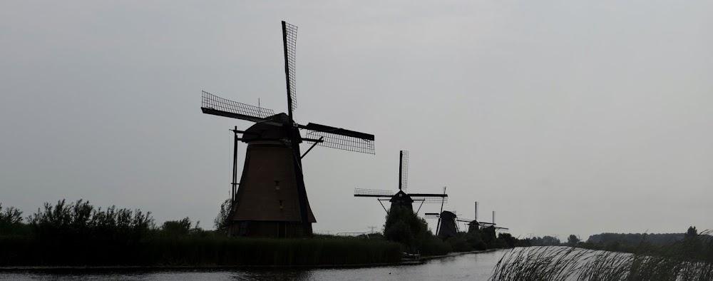 Day_6_Kinderdijk_26.JPG