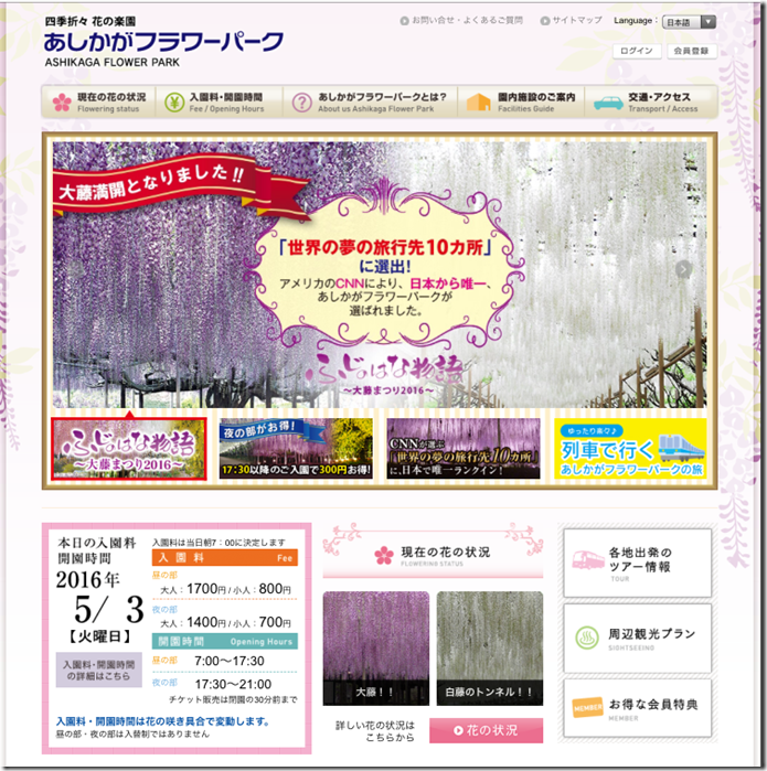 在最美的季節遇見足利紫籐花卉公園:門票交通攻略實況(上)07