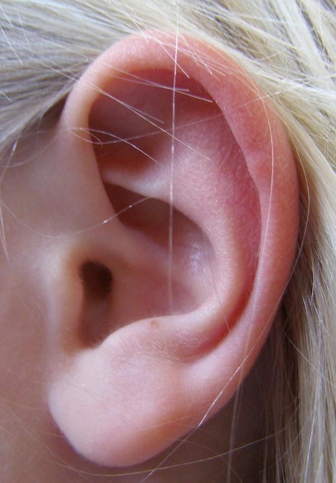 कान के रोग - फोड़े फुन्सी और दर्द भगाने के 16 घरेलु उपाय