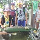 生水自然教室2015夏
