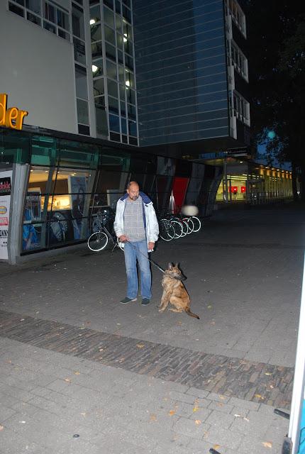 KNON-honden in Emmen - DSC_0847.JPG