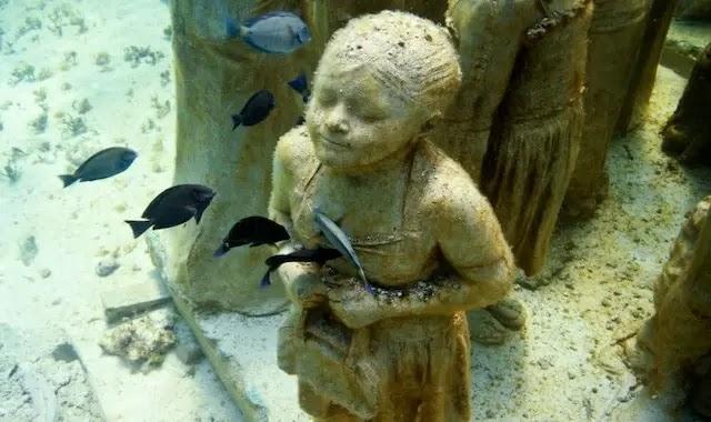 شاهد بالصور متحف موسى بين الحفاظ على البيئة البحرية وسحر الجمال
